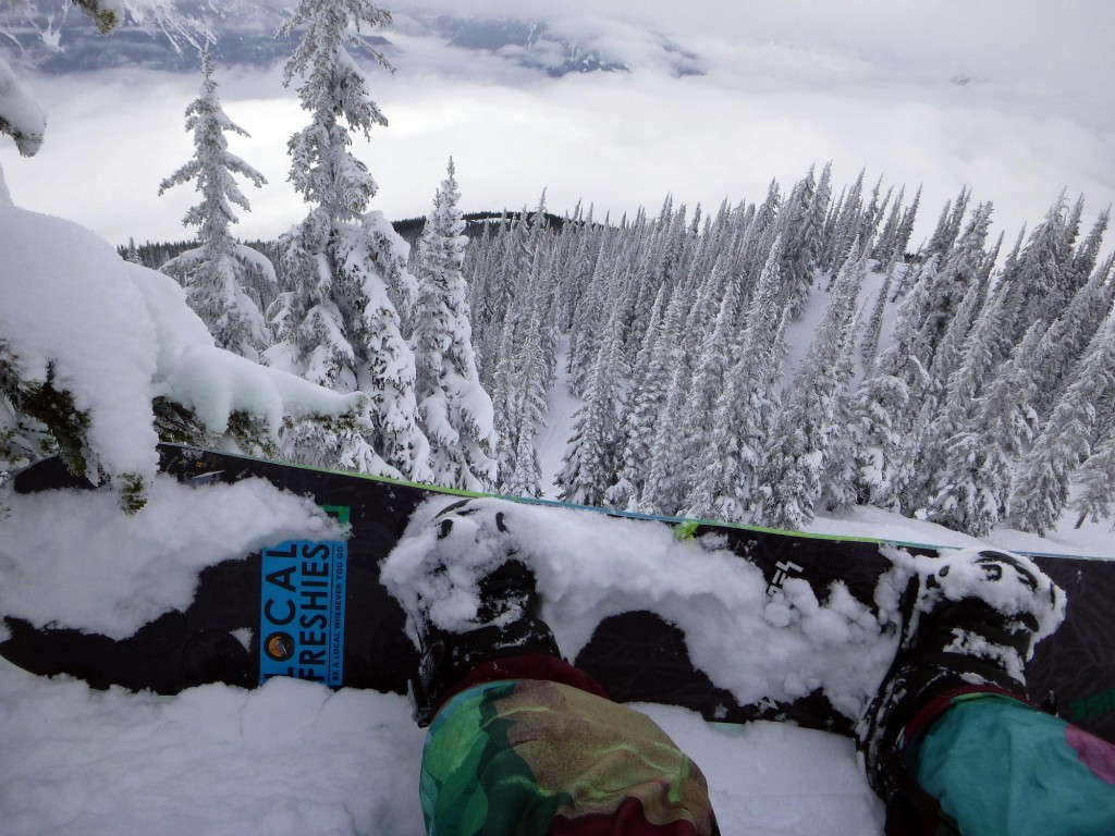 Revelstoke Ski Resort. Not a bad option when you cant heli-ski.