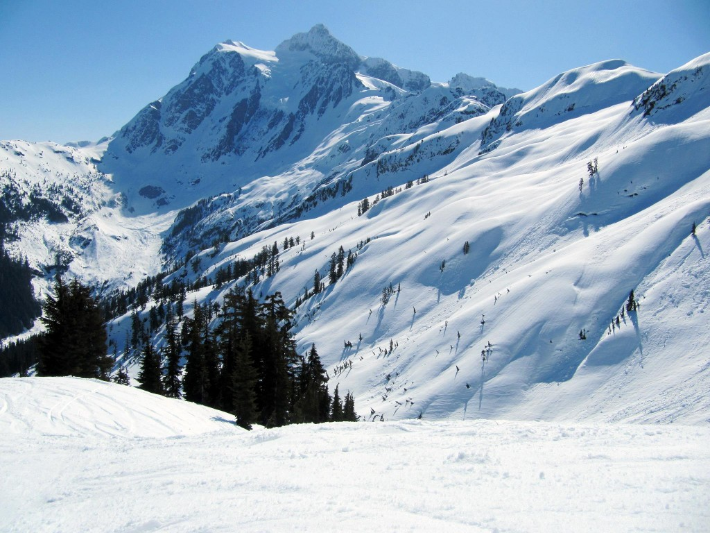 Mt Baker Ski Area - Image Taken by Iwona Kellie