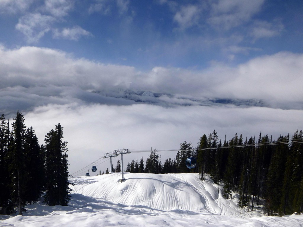 A winter wonderland - Revelstoke - Image taken by - Local Freshies