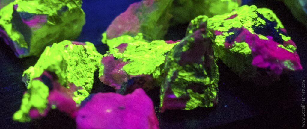 Johnsons Gems glow in the dark minerals wallace Idaho
