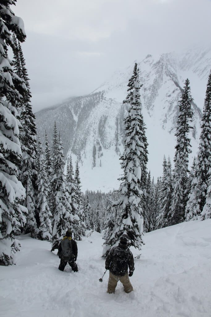 Canuck Splitfest Revelstoke Powder Splitboarding Backcountry