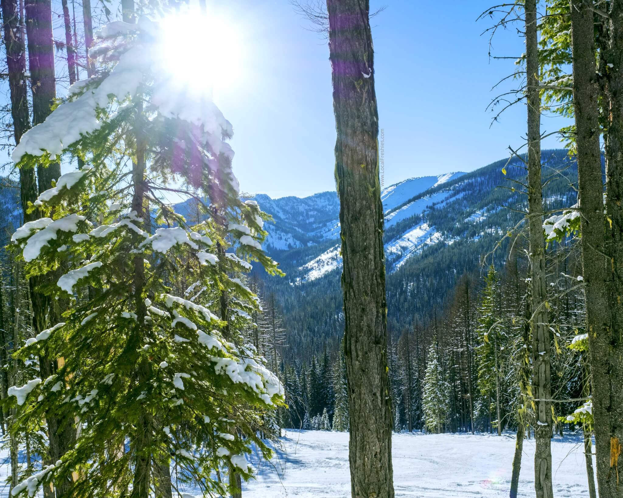 Lookout Pass expansion snowboarding sunshine Idaho