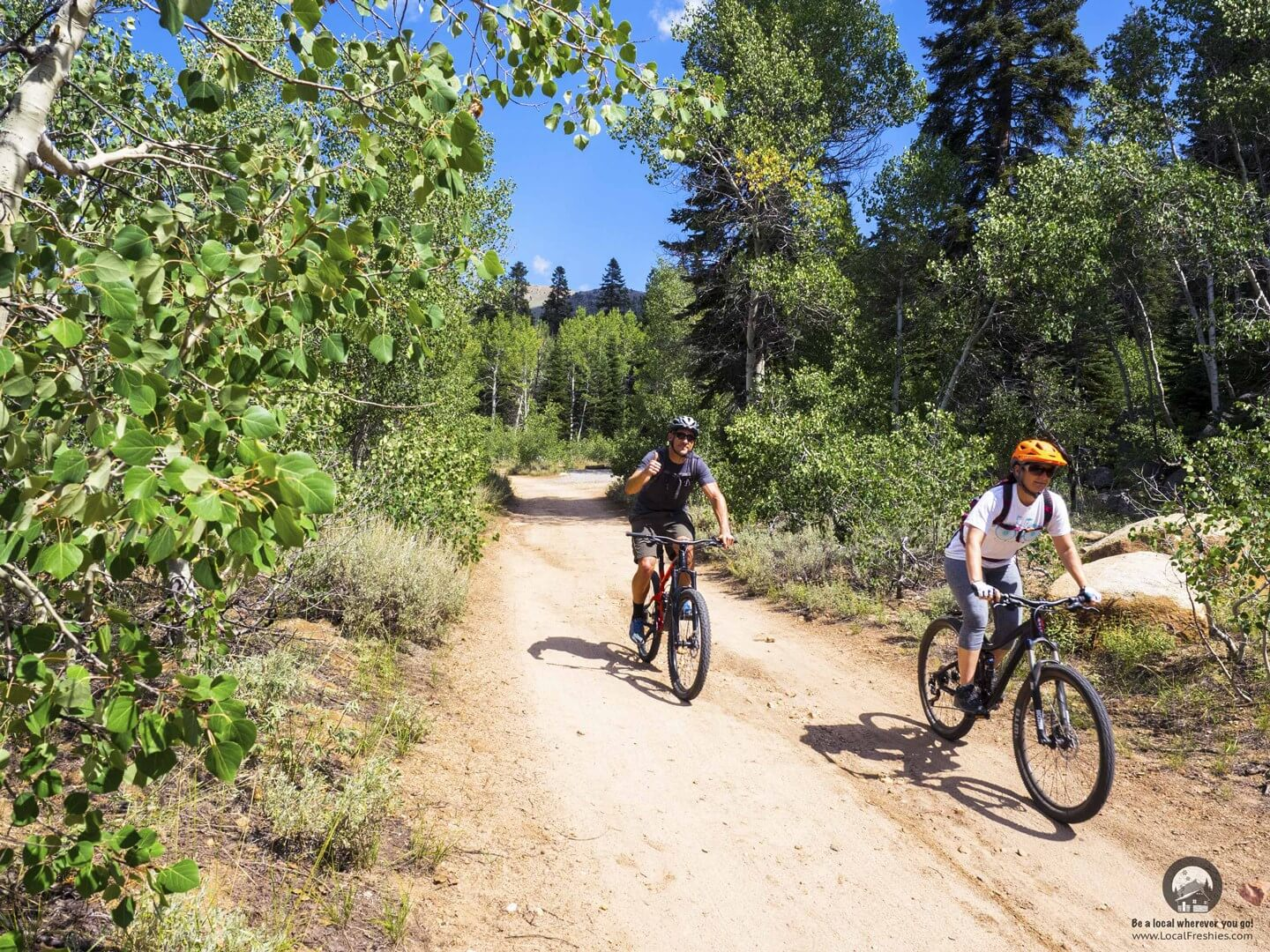 mountain biking at Spooner Lake State Park surrounded by Aspens