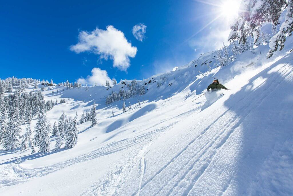 Ty Dayberry Lake Tahoe Telemark Skiing Powder Shot Future Freeheel Sierra At Tahoe