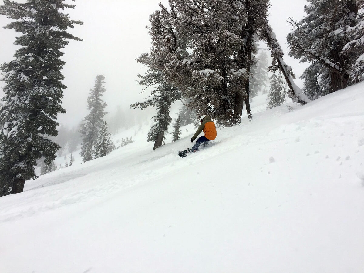 Mt Rose Powder Day Pineapple Express Miracle March