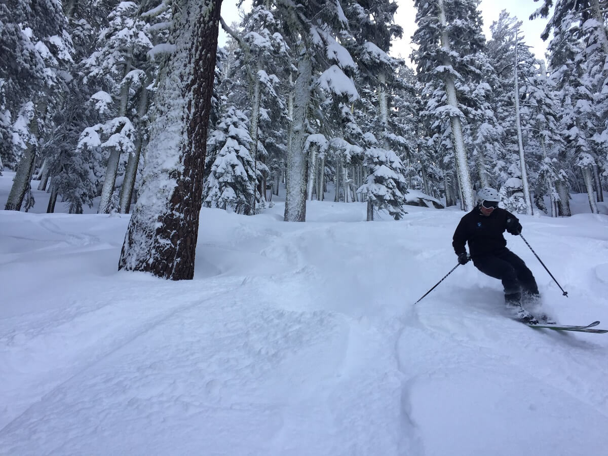 Sierra-at-Tahoe Travel Guide powder day tree skiing