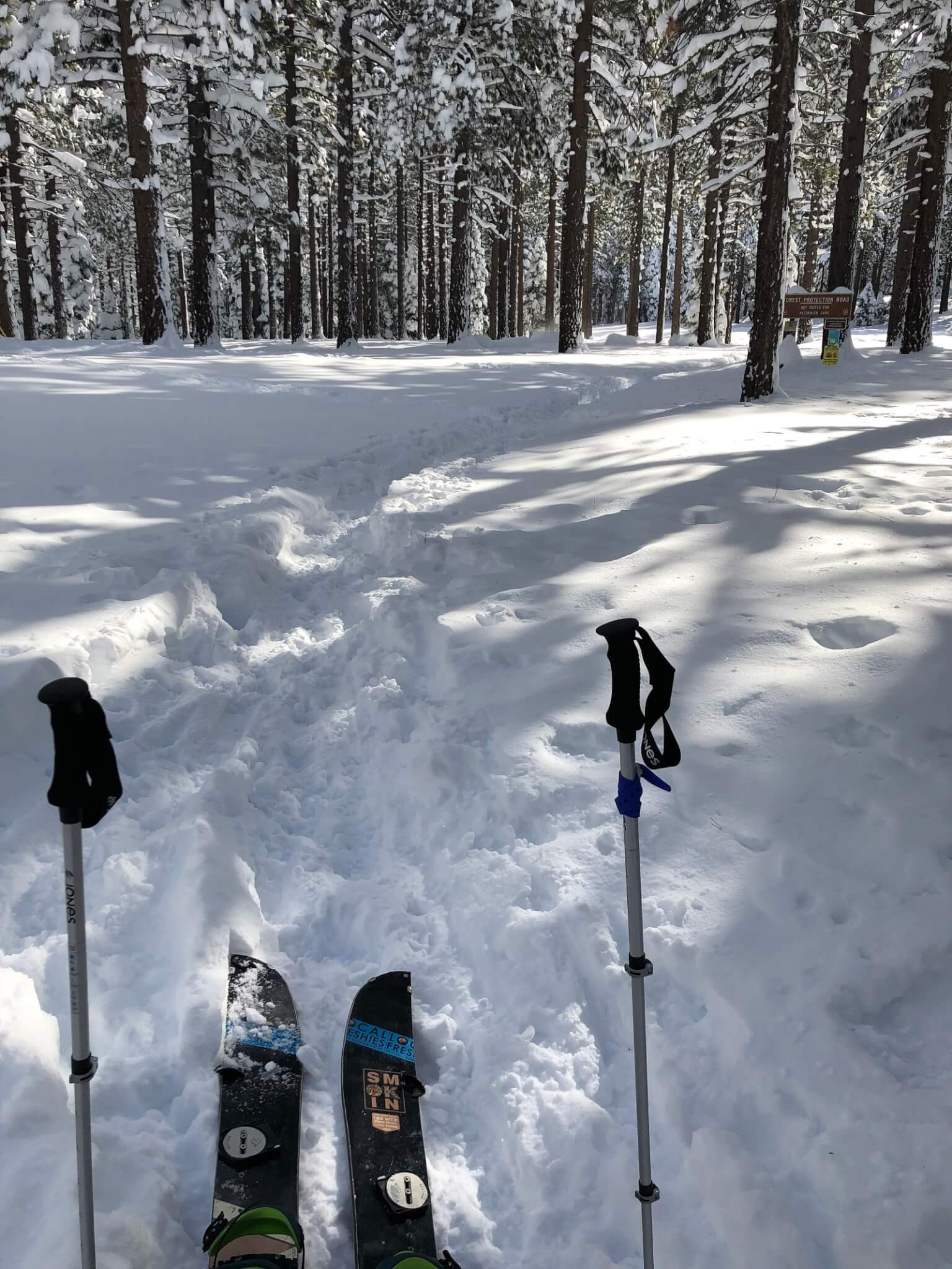 Backcountry Skiing Lake Tahoe Trimmer Peak Splitboarding