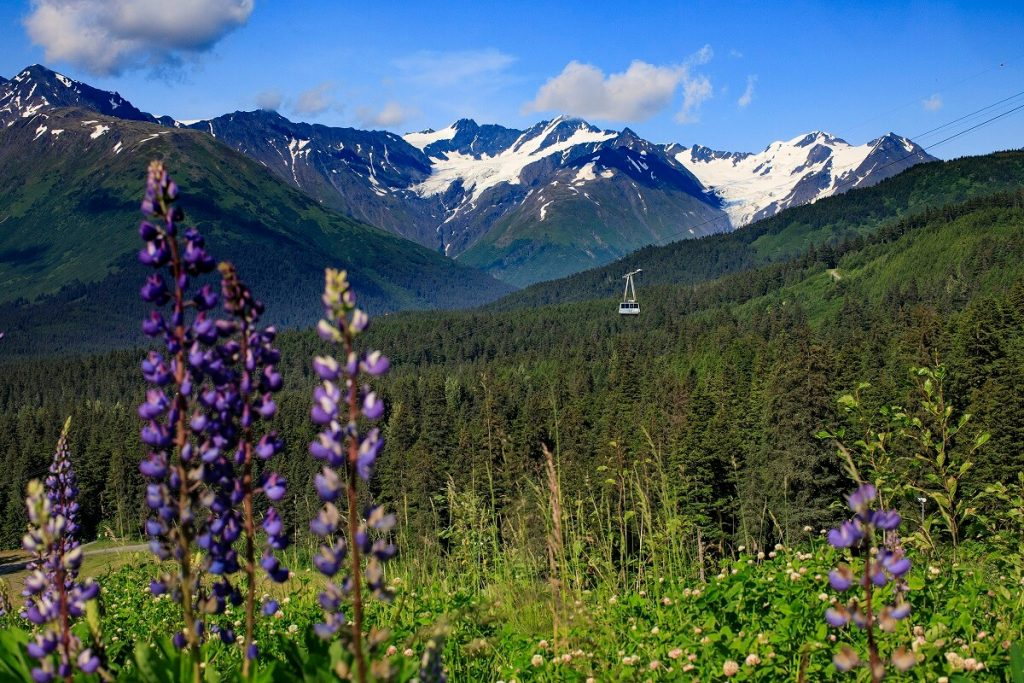 Summer Ski Towns to visit in the Summer Girdwood Alyeska Alaska Tram