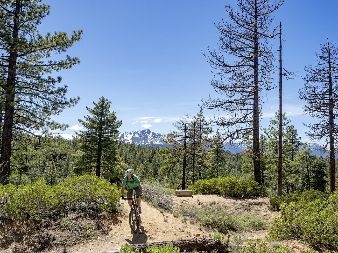 Powerline Mountain Bike Trail with Mt Tallac in the distance