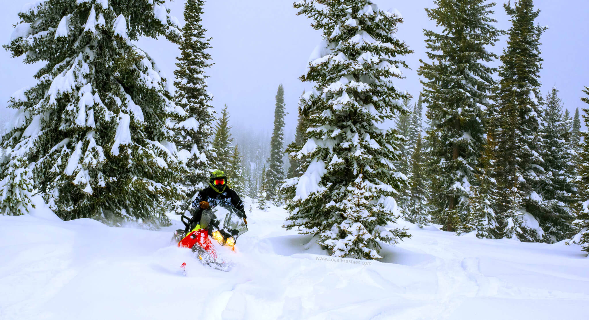 snowmobiling in the Payette National Forest near Brundage Resort by McCall Idaho