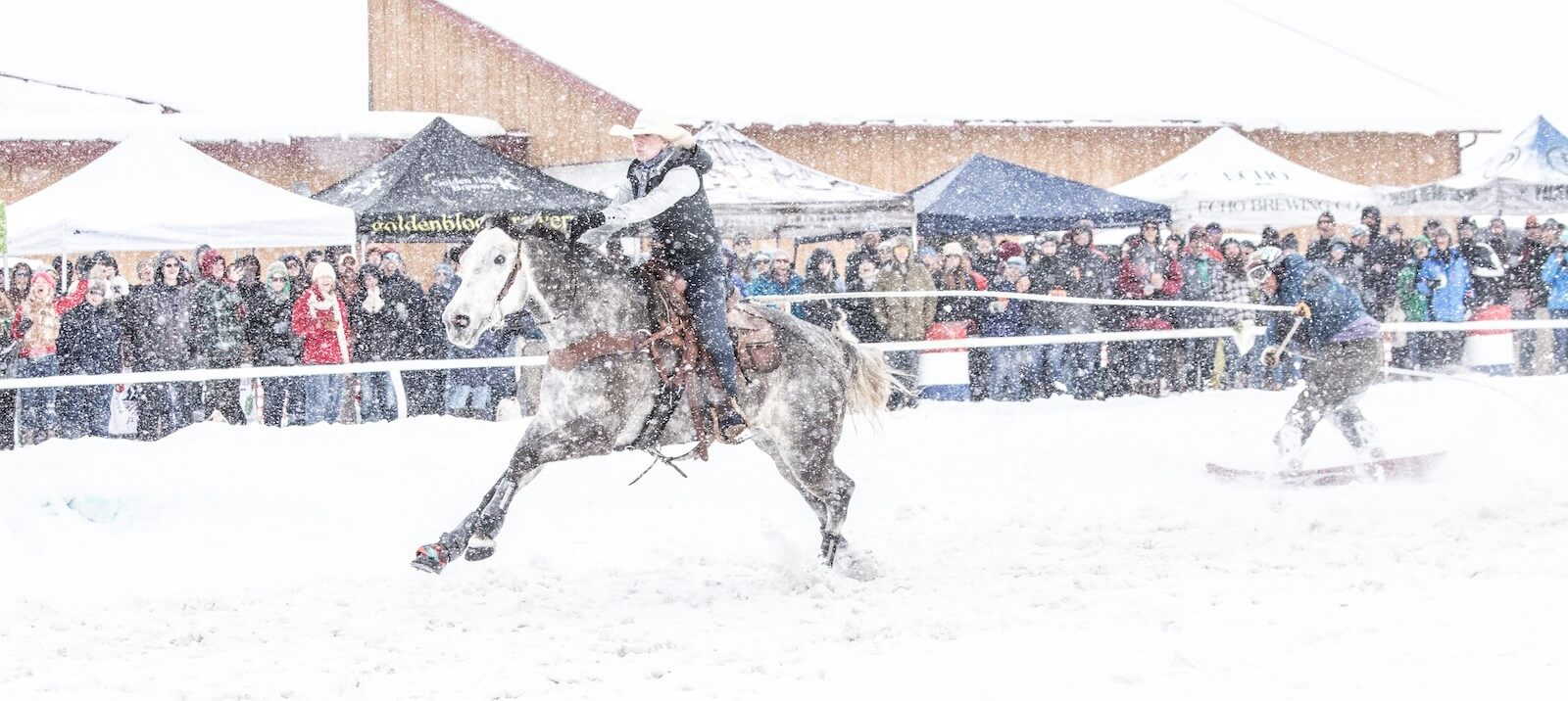 snowing san juan skijoring ouray county fairgrounds