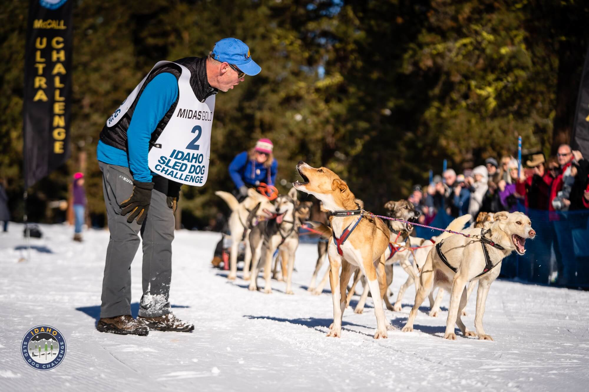 Idaho Dog Sled Challenge McCall Winter Carnival
