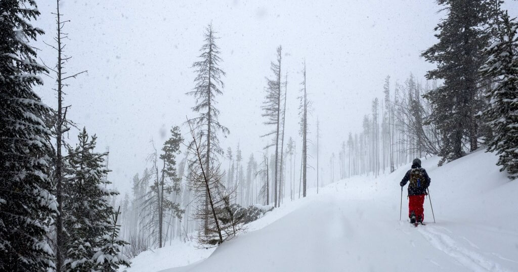 splitboarding in Lookout Pass backcountry during snowstorm