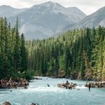 Canadian Rockies behind the Alberta Cup 2019 river surfing the mountain wave on the Lower Kananaskis River