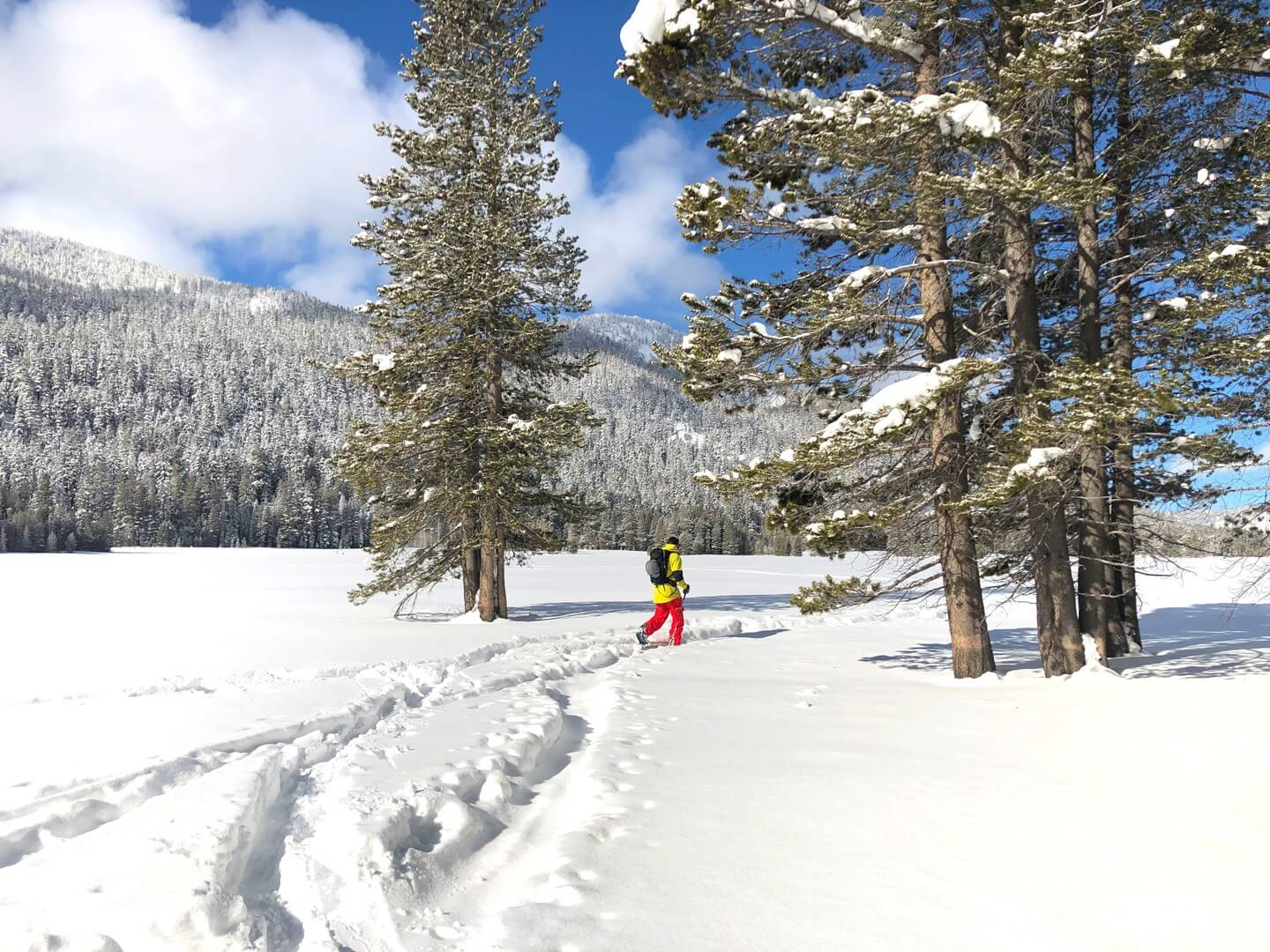 Sunny day cross county skiing in Lake Tahoe near Powder House