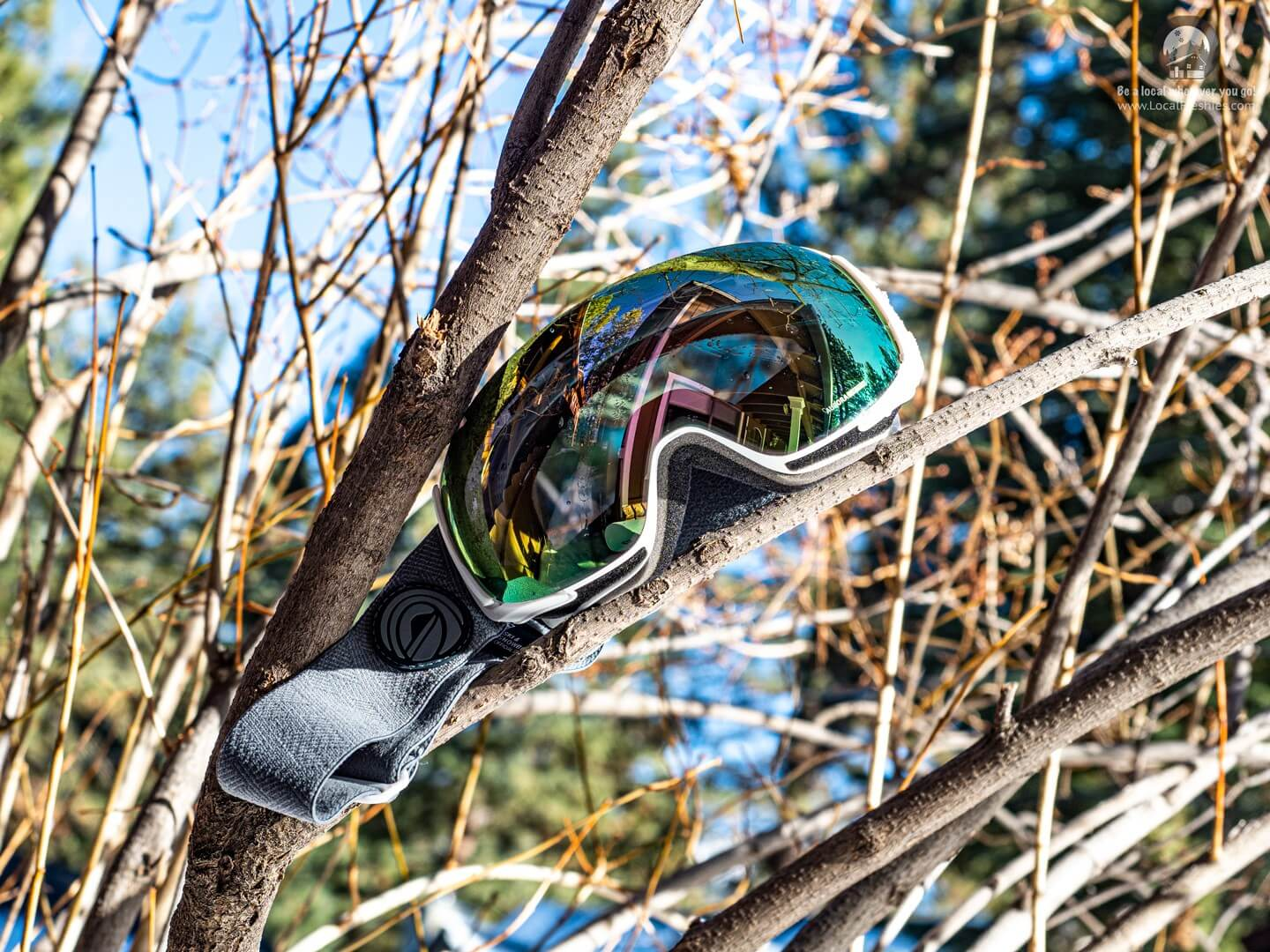 Wildhorn Roca Snow Goggles on a sunny winter's day