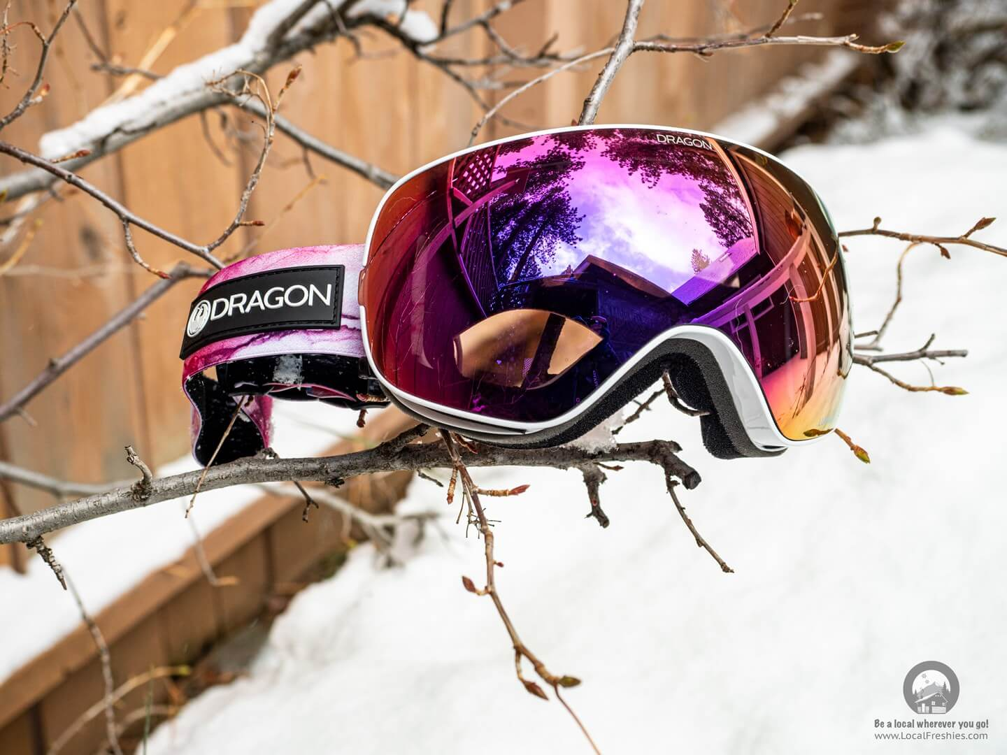 dragon x2 goggles in winter background