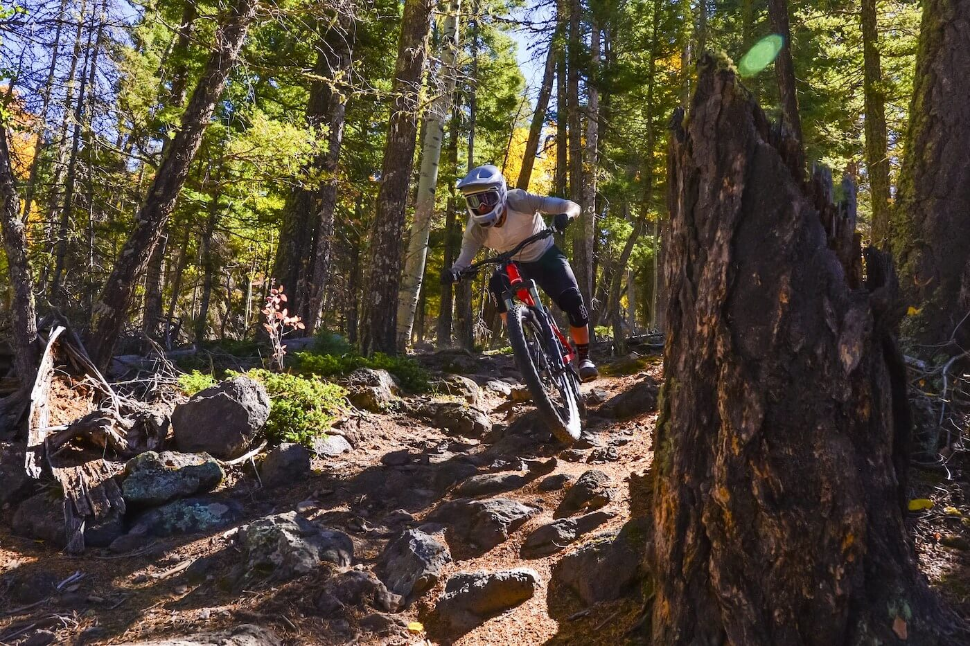 rowdy section at Angel Fire Bike Park